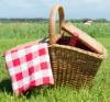 Neformální degustace - piknik
